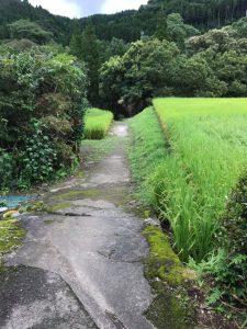 川活用イベント@長田地区