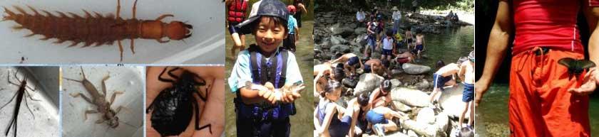 川の自然観察会